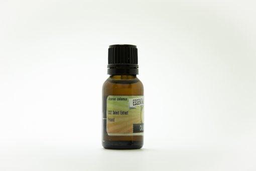 calamus root essential oil pure