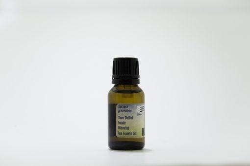 palo santo essential oil pure