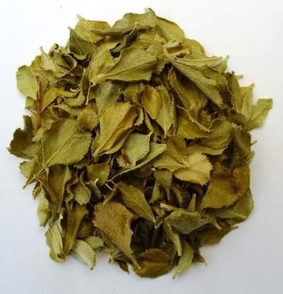 buchu essential oil pure