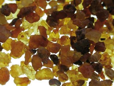 Frankincense & Myrrh Oil Collection