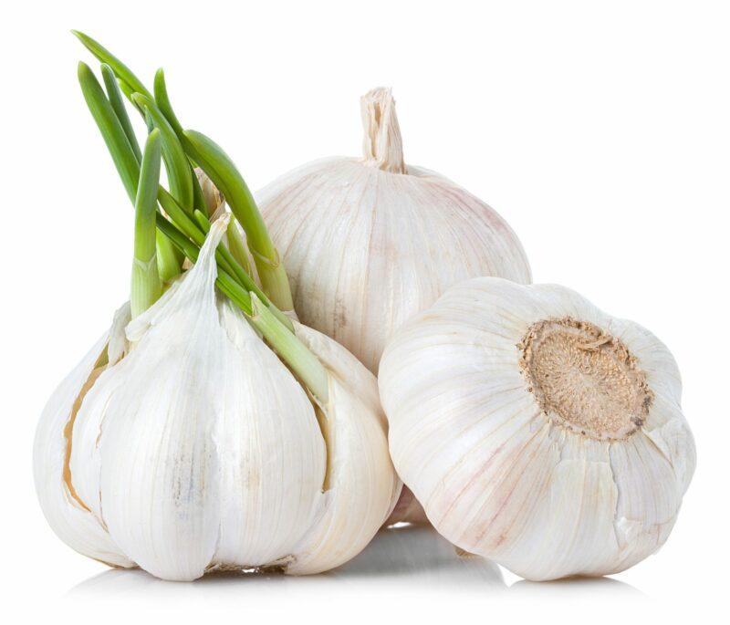 Garlic Extract (CO2)